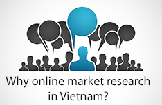 Vietnam Market Research Report